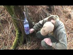 First we show an Undercurrents bushcraft video about how to take the tasty sap from the birch tree skillfully. The A to Z of Bushcraft team cover how to drill and then leave the tree in good repair. Survival Prepping, Survival Skills, Wilderness Survival, Survival Shelter, Irrigation, Bushcraft Skills, Edible Wild Plants, Living Off The Land, Gardens