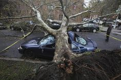 Queens New York | ... including this damage in the borough of Queens, New York City. Reuters