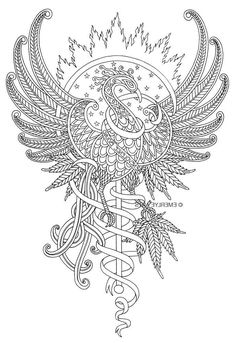 Tribal Tattoos, Tattoos Skull, Feather Tattoos, Free Adult Coloring Pages, Coloring Book Pages, Phoenix Painting, Design Dragon, Dragons Tattoo, Paper Cutting Templates