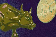 John Mcafee, Capital Expenditure, Commodity Futures, Bitcoin Miner, Bitcoin Wallet, Bitcoin Price, Investors, Billionaire, Blockchain