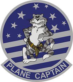 F-14 Tomcat Plane Captain