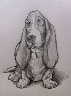 How to Draw a Basset Hound Dog – waff life photos and shared – Wunderbare Kunst Dog Drawing Simple, Cute Dog Drawing, Drawing Ideas, Step By Step Sketches, Step By Step Drawing, Dog Drawing Tutorial, Cat Steps, Basset Hound Dog, Sketch Inspiration