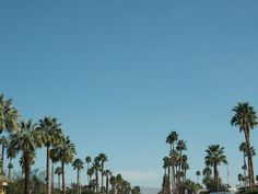 Nicolette Mason, Oh The Places You'll Go, Palm Springs, Hammock, Travel Guide, Wanderlust, Heaven, Style Inspiration, Sky