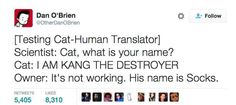 Just 27 Surprisingly Funny Tweets About Cats