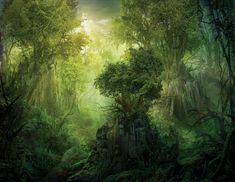 Forest in Zendeek