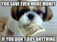 "How to save money on Black Friday - Funny how-to advice on saving money on Black Friday: ""You save even more money if you don't buy anything. Pet Insurance For Dogs, Pet Insurance Reviews, Health Insurance, Shopping Quotes, Shopping Tips, What Dogs, Thing 1, My Philosophy, Healthy Pets"