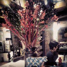 Flores & Colores Casa Fuego