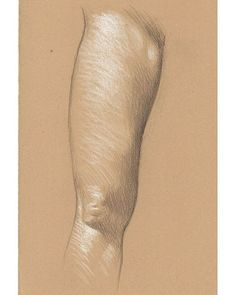 Maya's Right Leg 3B pencil and white Prismacolor pencil on Rives BFK Tan…