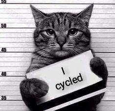 I cycled