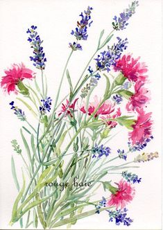 watercolor paintings of lavender | ... and lavender watercolor painting original flowers floral art flowers