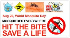 PRAGATI – the answer to Mosquito Menace!  Today is world Mosquito Day. Worldwide millions of people die of deadly mosquito infected diseases like Malaria, Yellow Fever and filariasis. Pragati has been working hard for creating a mosquito free environment since 1996. Pragati model has been recognized by United Nations, eminent personalities, global leaders and who have strongly recommended for replicating this model worldwide.  Pragati has created a mosquito free area at its biodiversity…