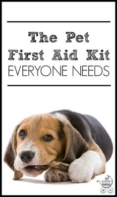 Everything you need in case of a pet emergency. | Fit Bottomed Mamas