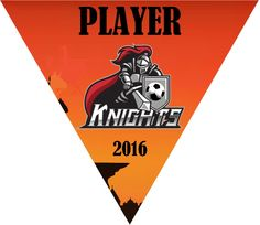 Make your own triangle soccer pennants, soccer team banners $10.99