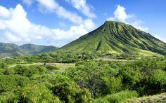 Honolulu's Top Healthy Restaurants - Forbes Travel Guide