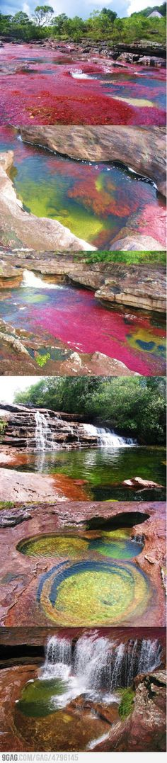 "River of Five Colors/ Caño Cristales in Colombia.Caño Cristales is a Colombian river located in the Serrania de la Macarena, province of Meta. aka ""The Liquid Rainbow"" or even ""The Most Beautiful River in the World"" Places Around The World, Oh The Places You'll Go, Places To Travel, Around The Worlds, Wonderful Places, Beautiful Places, Adventure Is Out There, Beautiful World, Wonders Of The World"