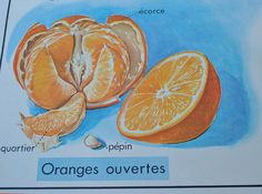 Original French school posters Vintage by ForTheLoveOfFrance