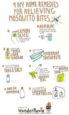 To: 9 DIY Home Remedies for Relieving Itchy Mosquito Bites 9 DIY remedies for mosquito bites.apple cider vinegar can do DIY remedies for mosquito bites.apple cider vinegar can do anything! Mosquito Bite Relief, Bug Bite Relief, Mosquito Bite Cure, Mosquito Bite Swelling, Treatment For Mosquito Bites, Bug Bite Treatment, Mosquito Trap, Mosquito Control, Mosquito Killer