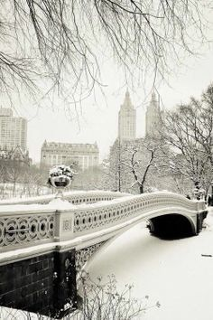 Fancy - Snow in Central Park.