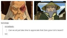 Can we all just take time to appreciate that Zuni grew Iroh's beard? NO