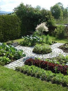 Edible garden. Possible layout for front yard. Would be a good use of space.