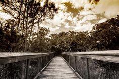 old florida #fortmosestatepark #staugustine #instagram_florida #sonyimages #sony_a6000 #igersjax #roamFlorida #stackablesapp #nature #naturelovers #historical by jaxrabbit