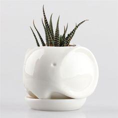 Amazon.com: Little Dog White Ceramic Succulent Plant Flower Pot Flowerpot…