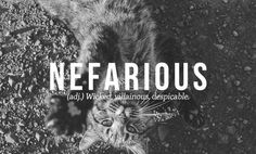 """Most beautiful English words: """"nefarious"""" - wicked, villainous, despicable Unusual Words, Weird Words, Rare Words, Unique Words, Powerful Words, Unusual English Words, Old English Words, English Time, Learn English"""