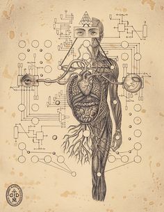 Soul Of Science - Kunstbuch von Daniel Martin Diaz - spirit - - Abstract Psychedelic - Art Art And Illustration, Psychedelic Art, Art Visionnaire, Occult Art, Anatomy Art, Human Anatomy, Inspiration Art, Visionary Art, Sacred Art