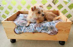 Doggie Wine Bed