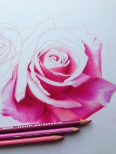 Wanna work on more colored pencil pieces
