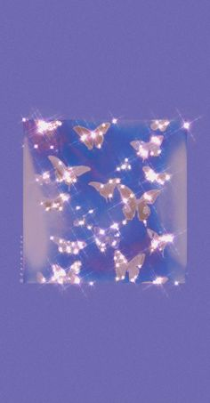 purple butterflies aesthetic wallpaper