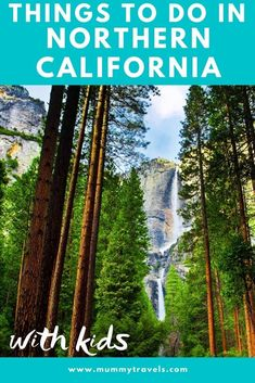 The 13 top things to do in Northern California with kids, from gold rush ghost towns to national parks and more, including tips if you're planning a Pacific Coast Highway road trip with kids Highway Road, Pacific Coast Highway, California With Kids, Northern California, Mendocino Headlands State Park, San Francisco With Kids, Stuff To Do, Things To Do, Visit Usa