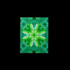Find a Fractal Shamrock  Puzzle from Bill M. Tracer Studio, at Zazzle: http://www.zazzle.com/find_a_fractal_shamrock_puzzle-116782487824449165