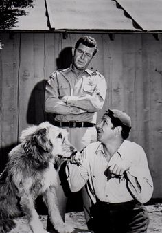 "Gomer and Goober Pyle | ... Goober Pyle"" to tie him to his cousin ""Gomer Pyle"", slow-witted"