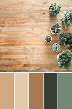 Color Palettes: Potted Plants - This Growing Home Color Palette For Home, House Color Palettes, Color Schemes Colour Palettes, Nature Color Palette, Paint Colors For Home, Warm Colour Palette, Warm Colors, Paint Color Schemes, House Colors
