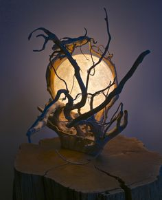 Stunning 46 Enchanting Diy Wooden Lamp Designs Ideas To Spice Up Your Living Space Driftwood Lamp, Driftwood Projects, Wooden Lamp, Wooden Diy, Diy Wood, Rama Seca, Deco Luminaire, Deco Nature, Creation Deco