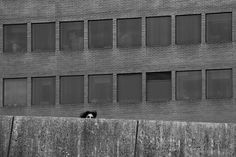50 Stunning Black and White Street Photographs - 121Clicks.com