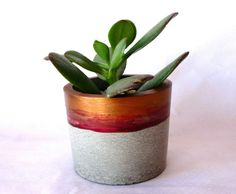 vaso de concreto Acepipes de Lourenço. #acepipesdelourenco