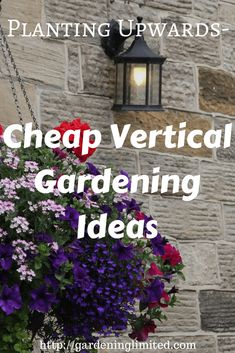 Looking for cheap vertical gardening ideas? Get several in this post!