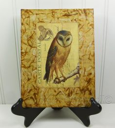 Barn Owl Beeswax Collage, Woodland Brown Owl Carte Postale Mixed Media by #NaturesWalkStudio on Etsy