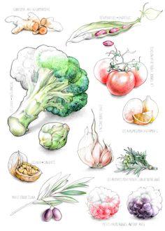 illustration légumes Florence Gendre