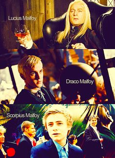 punkrockandfairyfloss:  fred-will-always-be-with-us:  potter-mellark:  unf the malfoys are so flawless  oh my god Bertie, get in my bed NOW...