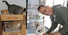 Man Fed the Feral Cats at His Work for Years – But Then – He Retired And …
