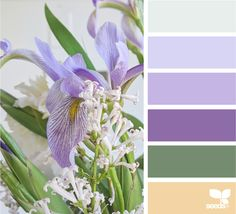 Hue Color, Color Combos, Color Schemes, Colours That Go Together, Design Seeds, Color Stories, Blog Design, Color Inspiration, Garden