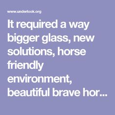 It required a way bigger glass, new solutions, horse friendly environment, beautiful brave horses, their helpful owners, lots of heavy equipment and an amazing crew to make this project come to life. It was a great challenge but results were worth every second of any struggle.