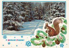 "Vintage ""Happy New Year"" Postcard - 1970s"