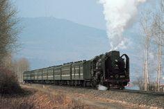 Old Chinese steam train 47 kilometers north of Tumen, Jilin province.