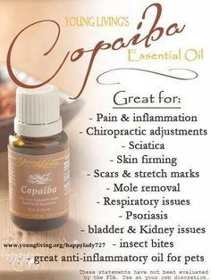 Young Living Essential Oils - Copaiba #youngliving #yleo #copaiba #healthy #natural