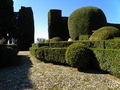 #Villa#Gamberaia# Rinascimento@Toscana Tiziano Codiferro Master Gardener