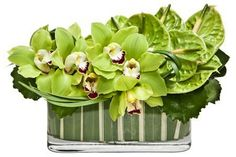A bright, citrus fusion of green cymbidium orchids and anthurium in a flax-lined glass trough